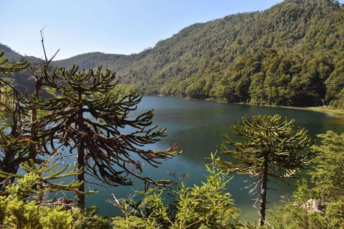 Viaggio in Cile Pucon