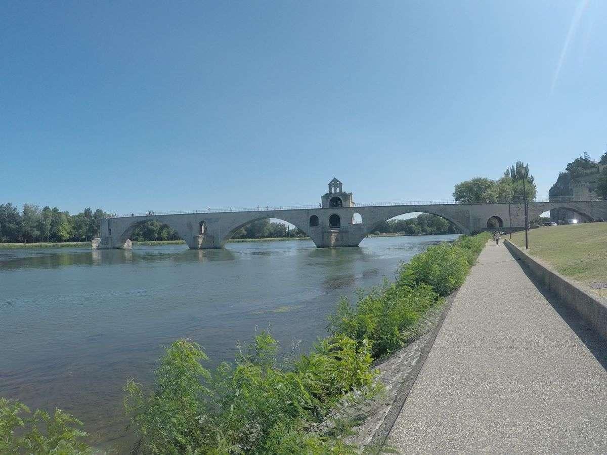 Avignone
