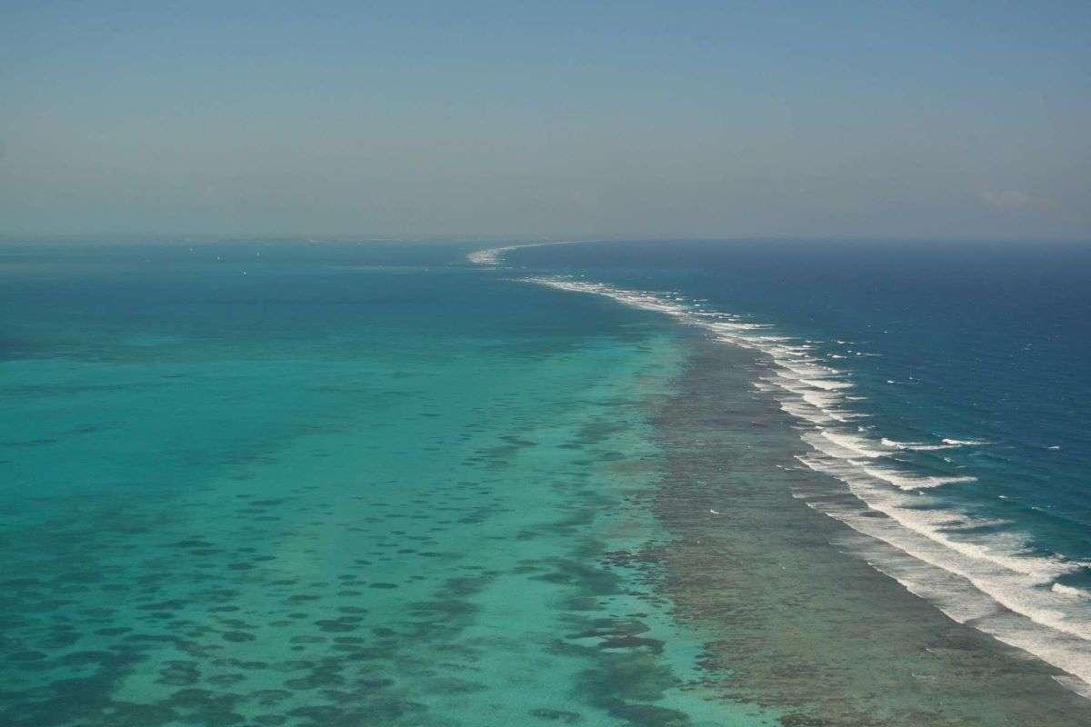 Barriera corallina Caye Caulker