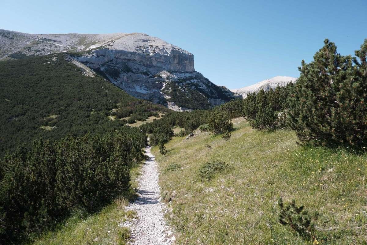 Inizio del sentiero che porta a Monte Amaro
