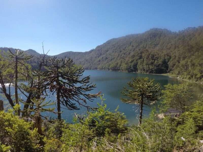 Parco Huerquehue laguna verde