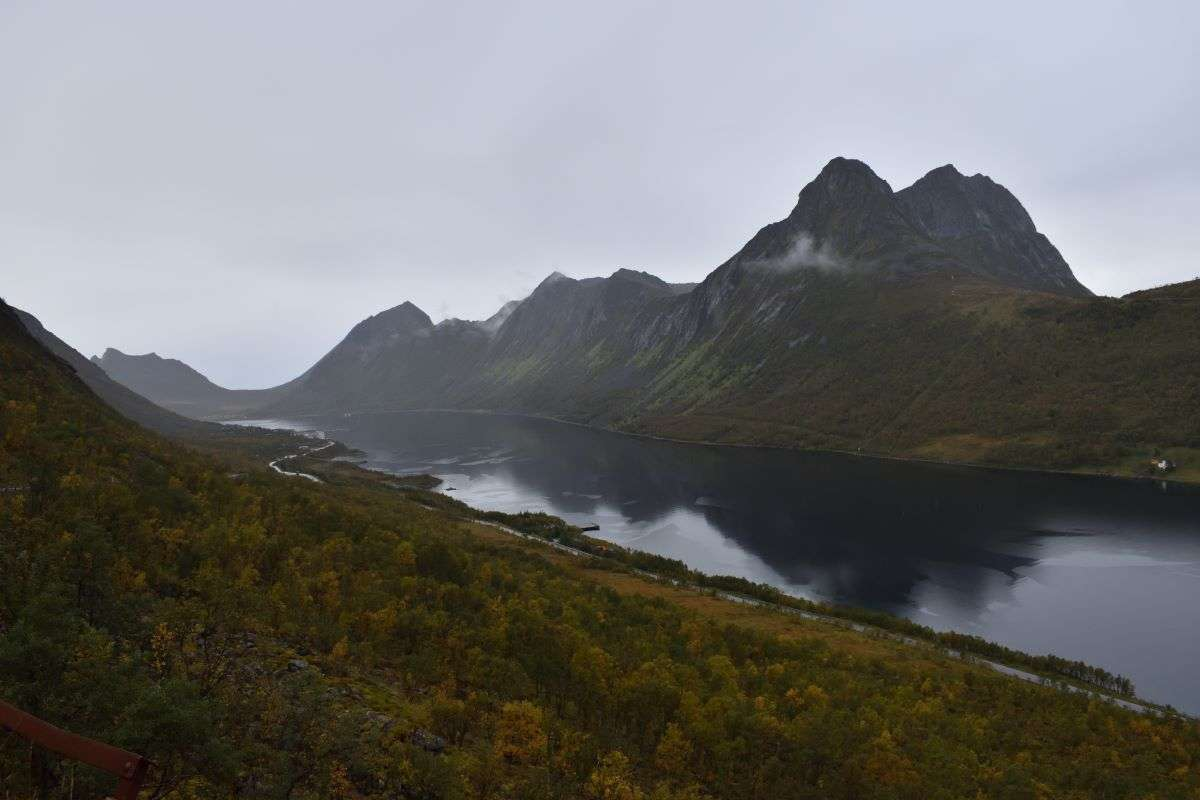 Senja Gryllefjord