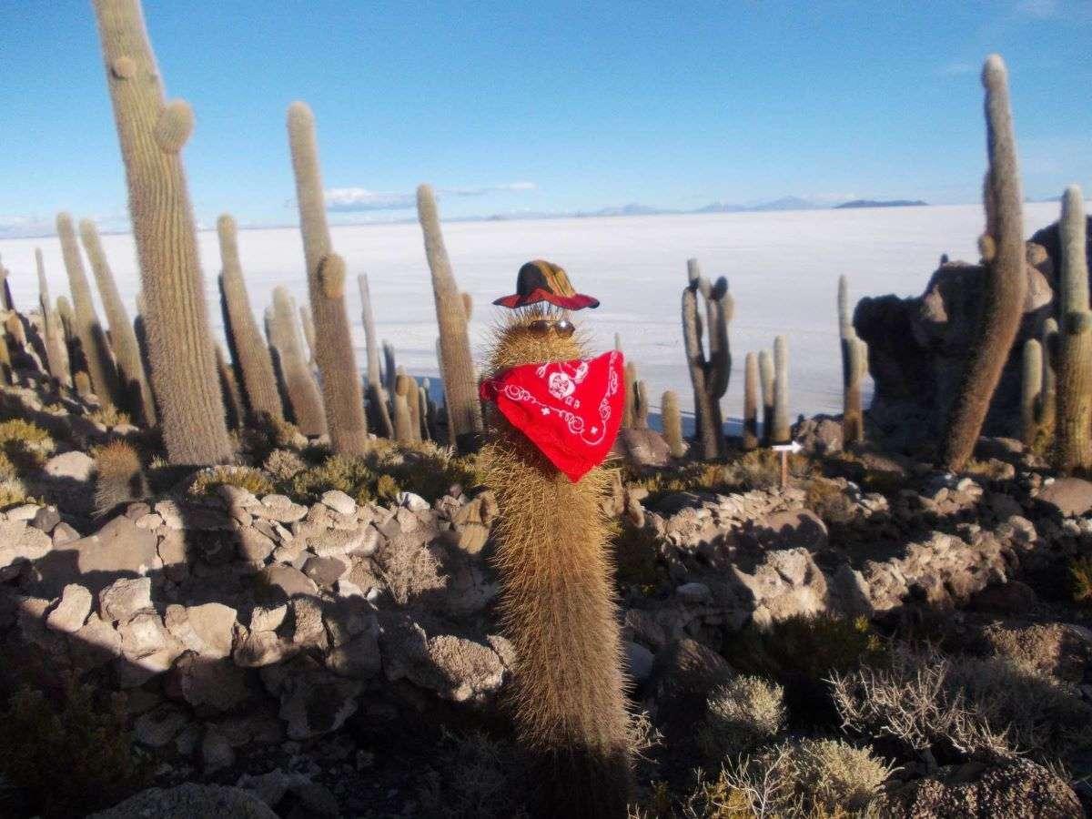 Viaggio in Bolivia Tour de Uyuni