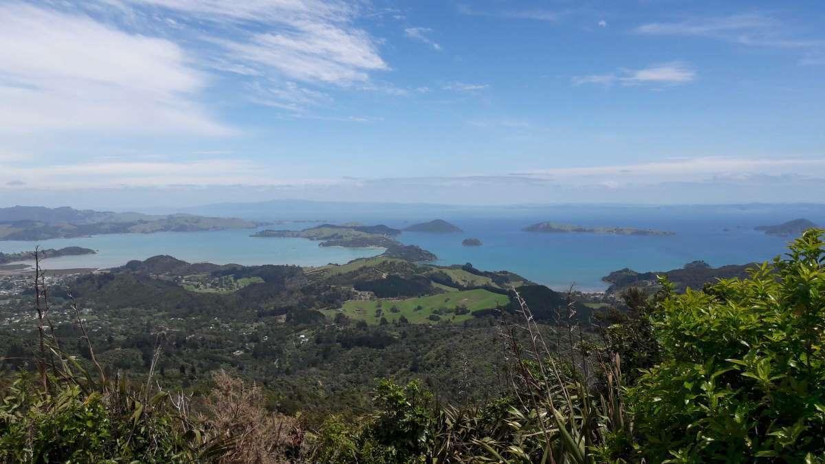 Viaggio in Nuova Zelanda Coromandel