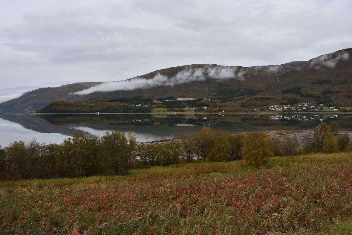 Vicino Tromso