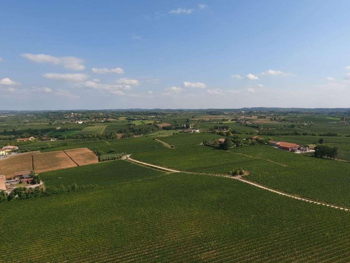 Vista dalla torre di San Martino della Battaglia
